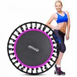 Top 10 Best Fitness Trampolines in Reviews
